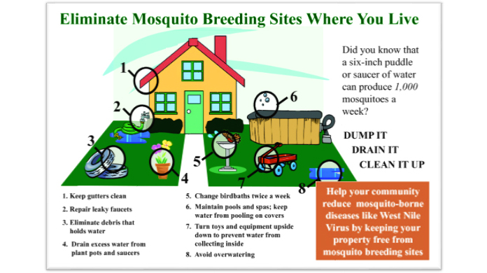Eliminate mosquito breeding places around your house